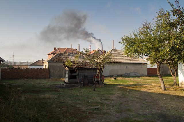 Curtea in care locuieste Agon, Foto: Cristi Popescu
