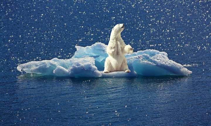 Schimbările climatice, o provocare majoră pentru liderii politici ai lumii (Sursa foto: pixabay)
