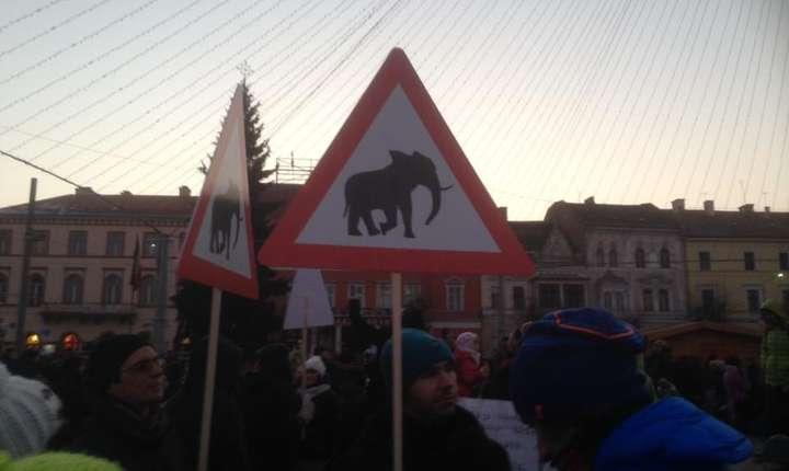 10.000 de oameni în stradă la Cluj-Napoca potrivit organizatorilor protestului împotriva OUG privind grațierea