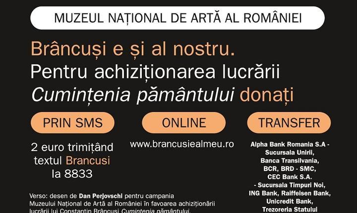 Brâncuși - Campanie 2016