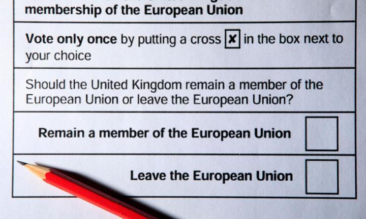 Buletin de vot pentru referendumul din 23 iunie 2016