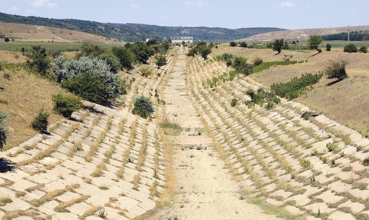 Fermierii ar putea primi despăgubiri până la sfârșitul anului