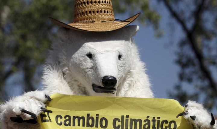 Activist Greenpeace îmbrăcat în urs polar, la un miting în Mexico City (Foto: Reuters/Daniel Becerril)