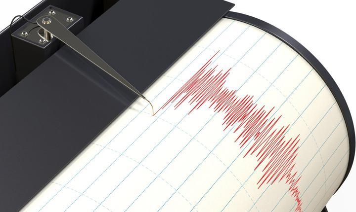 Seismul s-a resimţit în Bucureşti, Iaşi, Braşov, Galaţi şi Craiova