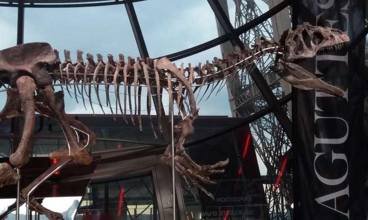 Acest schelet de dinozaur a fost vândut contra circa 2 milioane de euro la licitatia de pe Turnul Eiffel