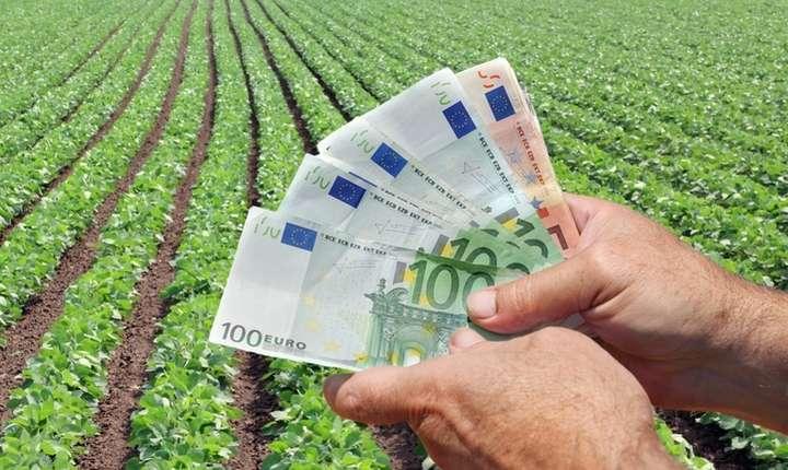 Un deziderat al noului PAC, susține Federația ProAgro, îl reprezintă producția ecologică