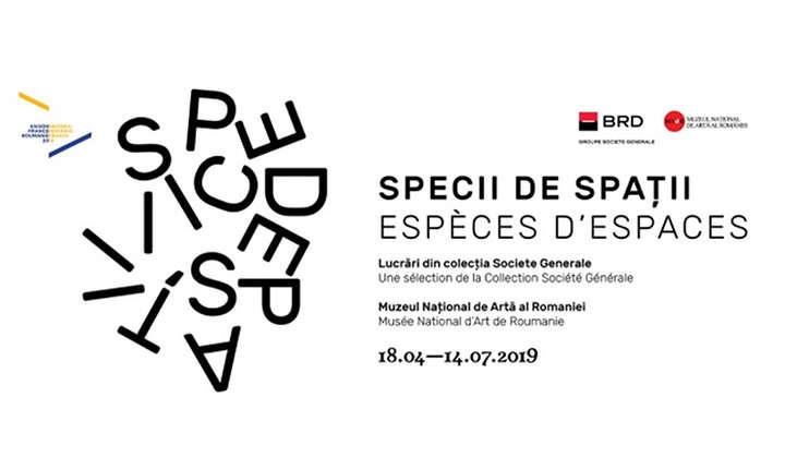 Expoziția Specii de spații - lucrări din colecţia de artă contemporană Société Générale