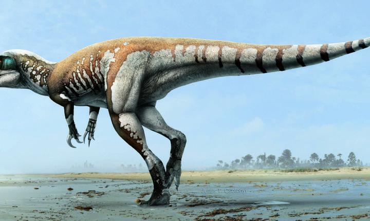 Dinozaurul cu gheare-foarfecă (Credit foto: Julius Csotonyi)