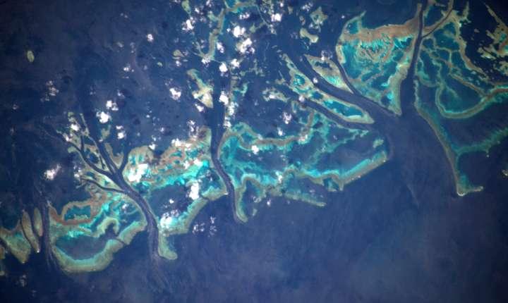 Marea Barieră de Corali, văzută din spaţiu (Sursa foto: Twitter/Thomas Pesquet)