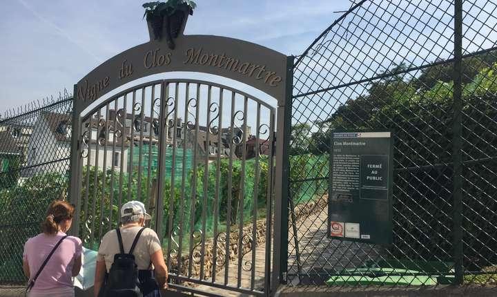Turisti admira Vigne du Clos Montmartre - Via Montmartre, Paris
