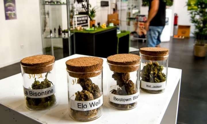În iulie 2018, un magazin în care se vindea cannabis în scop terapeutic a fost închis la Annoeullin, în apropiere de Lille, la putin timp dupa ce a fost deschis în luna mai.