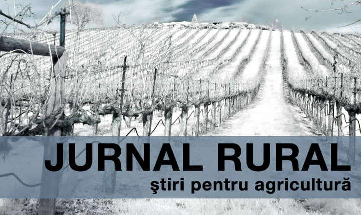 Fermele din România au cea mai mică dimensiune economică din Uniunea Europeană