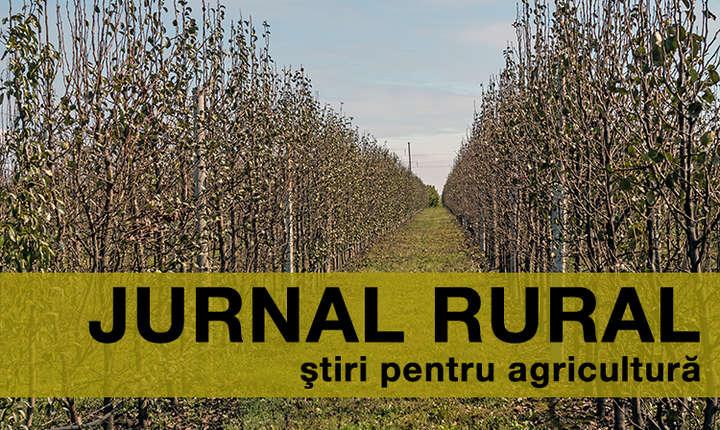 Fermierii români nu acceptă plafonarea plăţilor directe în viitoarea Politică Agricolă Comună