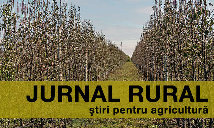 Din 16 octombrie începe plata în avans a subvențiilor pentru fermieri