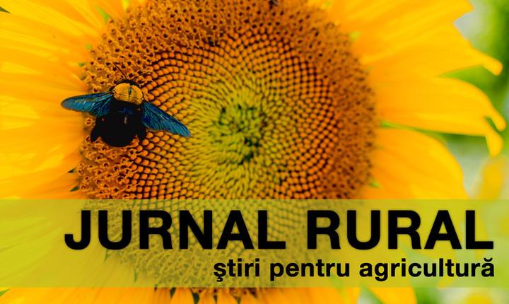 Fermierii români încep să primească avansul din subvenții