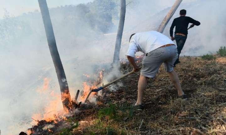 La Bormes les Mimosas riveranii încearca sa impiedice propagarea focului, miercuri 26 iulie 2017