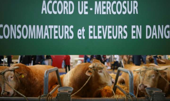 Protest al agricultorilor francezi împotriva acordului UE - Mercosur