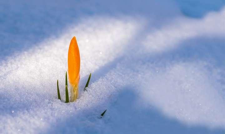 În Bucureşti s-ar putea să ningă în noaptea de luni spre marţi (Sursa foto: pixabay)