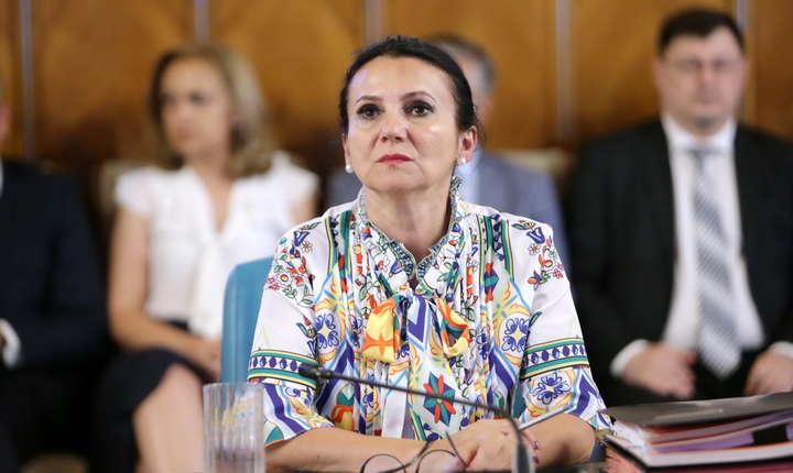 Sorina Pintea apără proiectul pacientului misterios (Sursa foto: gov.ro)