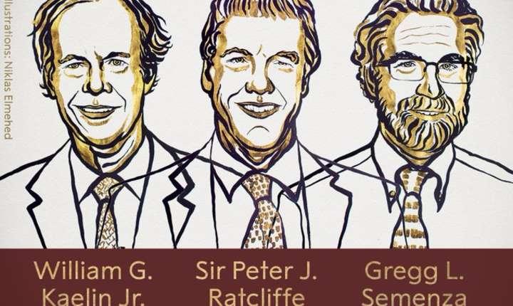 Profesoriii americani William Kaelin şi Gregg Semenza şi britanicul Peter Ratcliffe, laureatii Nobelului pentru medicinà 2019