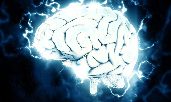 Cât timp funcţionează creierul după deces? (Sursa foto: www.pixabay.com)
