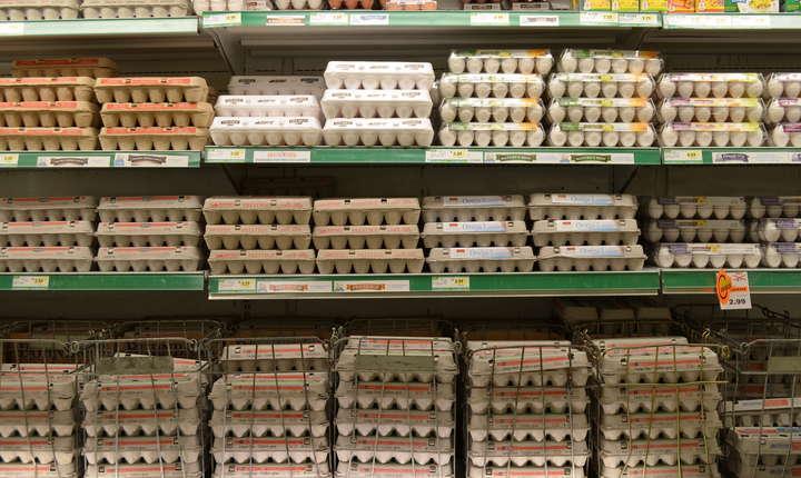 Milioane de ouă au fost retrase de pe rafturile magazinelor din Olanda, Germania şi Belgia