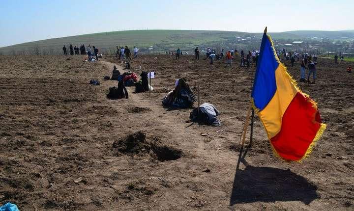 """Echipa """"Plantăm fapte bune în România"""" organizează prima acțiune de împădurire din 2017 (Sursa foto: www.plantamfaptebune.ro)"""
