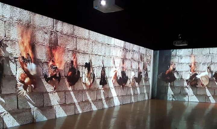 """""""Printemps"""" (Primàvara), operà video a artistului franco-algerian Adel Abdessemed, 2013"""