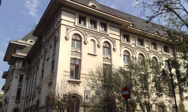 Primarul general Gabriela Firea a inițiat înființarea a 22 de companii municipale