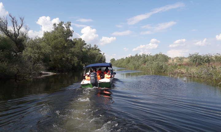 Echipele de specialiști și voluntari s-au deplasat prin Deltă cu ajutorul a șase șalupe