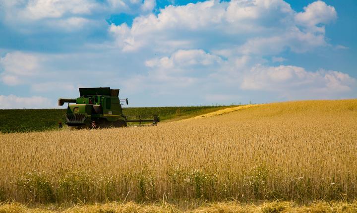 România se poate aștepta în acest an la recorduri de producție în agricultură, estimează Comisia Europeană
