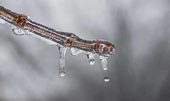Frig, la început de decembrie (Sursa foto: pixabay)