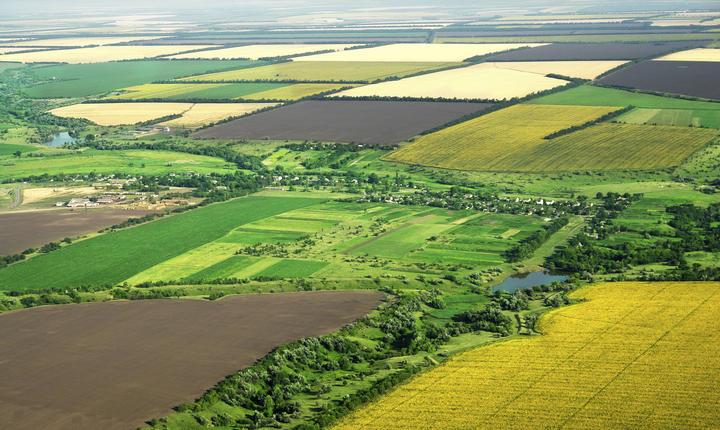 Străinii vor putea cumpăra cel mult 50 de hectare de teren arabil în România