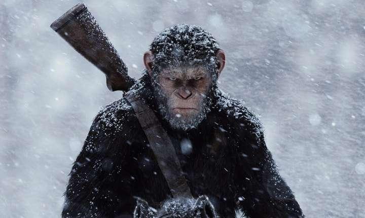 "Caesar, personajul central din seria ""Planeta maimuţelor"""
