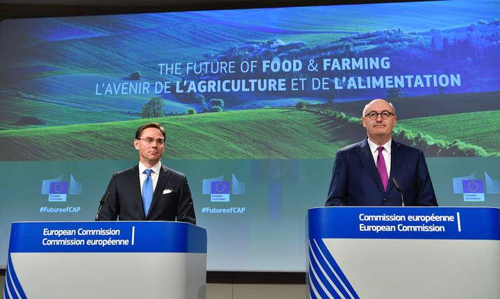 Procesul de consolidare și restructurare al fermelor mici este crucial pentru dezvoltarea agriculturii