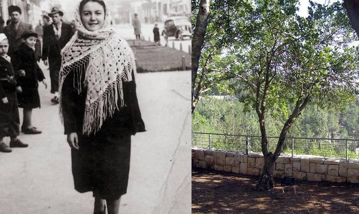 Elisabeta Nicopoi Strul avea 21 de ani și era muncitoare textilistă. Ea a ascuns 20 de evrei în timpul Pogromului, salvându-i de la moarte. În 1987 a primit titlul de Dreaptă între Popoare de către Memorialul Holocaustului Yad Vashem de la Ierusalim unde a fost plantat un copac în cinstea ei