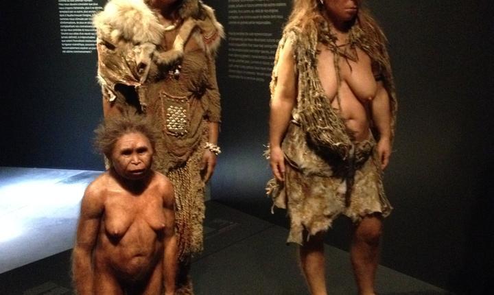 Istoria omenirii (si a exponatelor de la muzeu) începe aici