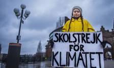 """""""Grevă la şcoală pentru climat"""" scrie pe panoul adolescentei suedeze Greta Thunberg"""