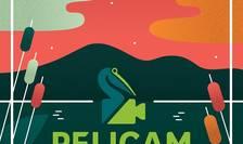 Afiș Festivalul Internațional de Film Pelicam