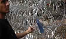 Un imigrant atinge un gard de sârmă ghimpată, la graniţa Serbiei cu Ungaria (Foto: Reuters/Stoyan Nenov)