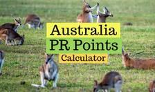 Sistem de imigrație de tip australian