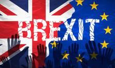 Guvernul britanic nu poate declanșa Brexit-ul fără aprobarea Parlamentului.