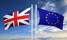 Șefa guvernului britanic declarase că va activa articolul 50 cel mai târziu până la 31 martie