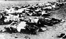Cadavre de evrei la Săbăoani, 3 iulie 1941