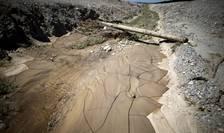 Secetă în California (Foto: Reuters/Lucy Nicholson)