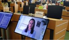 Svetlana Tihanovskaia în teleconferinţă cu deputaţi europeni.