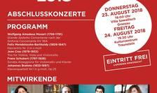 Afiș Concerte în Germania - SoNoRo-Interferențe