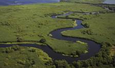 Delta Dunàrii