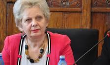 Doina Pană, vicepreşedinte PSD