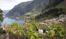 Economia insulei portugheze Madeira se bazeaza pe agricultura
